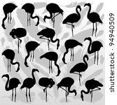 Flamingo Bird Silhouettes And...