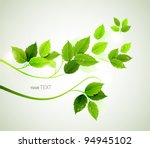spring  branch with fresh green ... | Shutterstock .eps vector #94945102