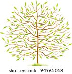 spring tree with green leaves... | Shutterstock .eps vector #94965058