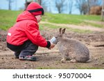 Little boy feed a rabbit in farm - stock photo