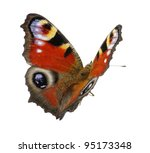 Stock photo butterfly isolated on the white 95173348
