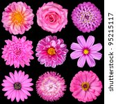 Selection Of Pink White Flower...