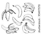 bananas | Shutterstock .eps vector #95497570