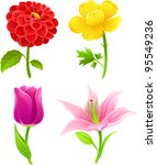Vector illustration with 4 flowers: dahlia, buttercup, tulip, lily