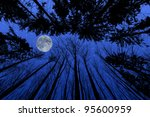 Night Forest With Trees...