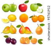 big group of different fresh... | Shutterstock .eps vector #95761912