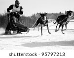 "PASTERKA , POLAND – FEBRUARY 04: First International Polish Championship Sled Dog PZSPZ ""Under Szczeliniec"" Sprint & Mid in Pasterka and Kar?ow, Poland February 04, 2012 - stock photo"