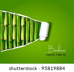 Bamboo Background With Ripped...