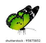 Stock photo green butterfly isolated on white 95875852