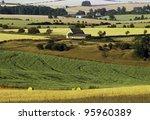 a field of crops ripening in... | Shutterstock . vector #95960389