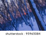 blur trees in the park after a winter storm (blur background), Bucharest, Romania - stock photo
