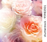 Stock photo beautiful flowers made with color filters 95983501