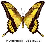 Isolated Yellow Butterfly...