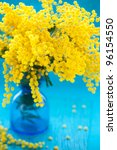 Yellow Mimosa On The Blue...