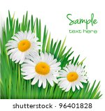 easter background. daisy... | Shutterstock .eps vector #96401828