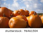 A Collection Of Pumpkins...