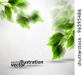beautiful green leaves  eco... | Shutterstock .eps vector #96595486