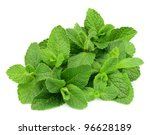 mint leaf close up on a white... | Shutterstock . vector #96628189