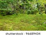 closeup of a moss in a japanese ... | Shutterstock . vector #96689434
