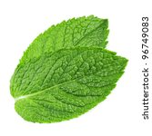 fresh mint leaves isolated on... | Shutterstock . vector #96749083