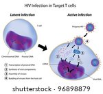 Latent and Active infection of T cell by HIV - stock vector