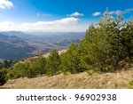 Mountain's scene with pine forest - stock photo
