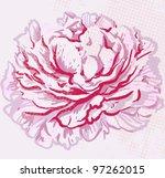 peony | Shutterstock .eps vector #97262015