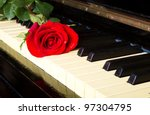 rose on a piano   Shutterstock . vector #97304795
