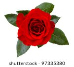 red rose | Shutterstock . vector #97335380