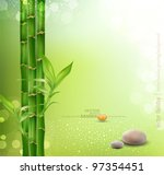 alternative,asian,background,balance,bamboo,beauty,boke,border,boulder,care,closeup,concept,decoration,detail,flora