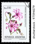 argentina   circa 1981  a stamp ... | Shutterstock . vector #97594079