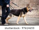 Stock photo master and his obedient german shepherd dog 97614653