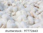 cotton background | Shutterstock . vector #97772663