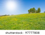 green farmland in the springtime - stock photo
