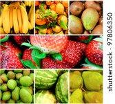 fruit collage | Shutterstock . vector #97806350
