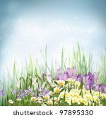 Winter or early spring nature background with grass and crocus flowers, primrose, snowdrop, violets and daisies. Spring floral background - stock photo