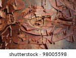 Small photo of Detail of bark of a paperbark maple tree (Acer griseum).