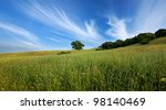 A Beautiful Hilly Green Meadow...