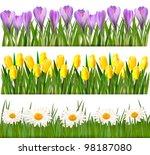 Fresh Spring Flower Borders....