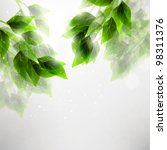 beautiful green leaves  eco... | Shutterstock . vector #98311376