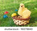 little chicken in the basket... | Shutterstock . vector #98378840