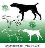 German Pointer Dog   Vector...