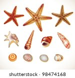 Shells Set Isolated  Vector...