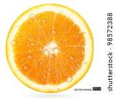 orange fruit with water drops... | Shutterstock .eps vector #98572388