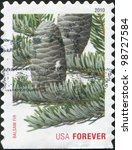 Small photo of USA - CIRCA 2010: A stamp printed in USA, depicts Balsam Fir (Abies balsamea), a series of Holiday Evergreens Forever, circa 2010