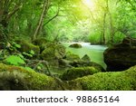 river in the forest | Shutterstock . vector #98865164