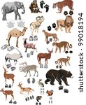illustration with animals and... | Shutterstock .eps vector #99018194