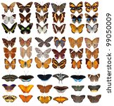 Stock photo collection of colored butterflies isolated on white 99050009