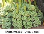 Green Banana Bunch