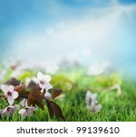 Beautiful floral spring background. Flowers in grass with blue sky - stock photo